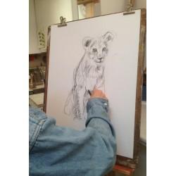 Cours de dessin pour adultes - Paris 17